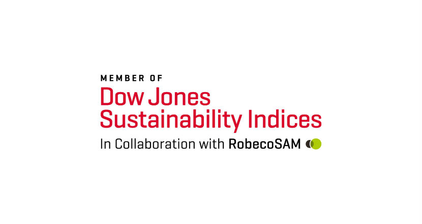 The Dow Jones Sustainability Index Chile logo